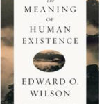 The Meaning of Human Existence cover