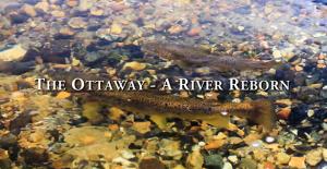 Ottawa - A River Reborn